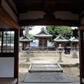 国府八幡神社・本殿