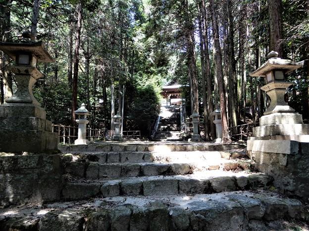 宇佐八幡宮 (1)
