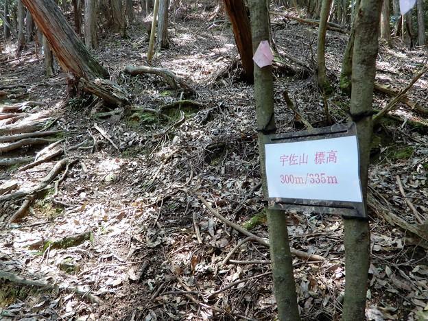 宇佐山城跡への道 (4)