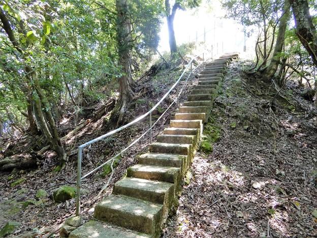 宇佐山城跡への道 (5)・本丸跡への階段