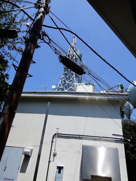 宇佐山城跡への道 (7)・本丸跡のTV塔