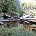 大伴黒主神社(大津) (5)