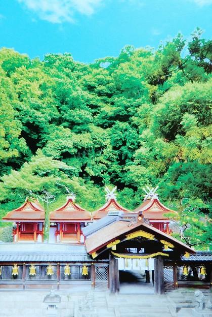 枚岡神社・平成令和の大造営記念 (7)