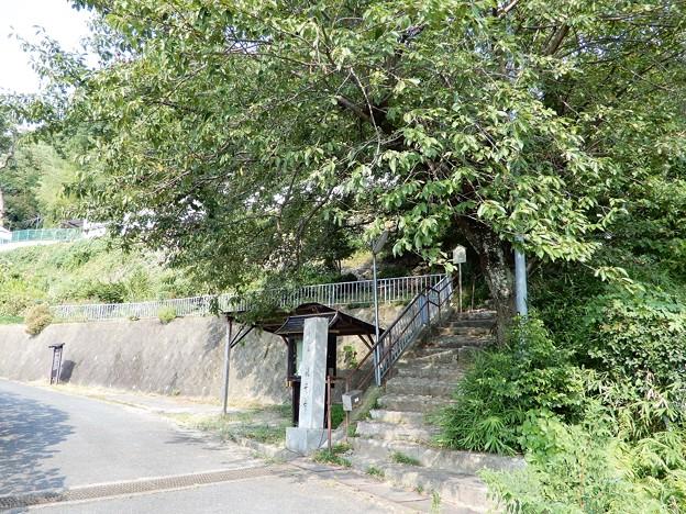 観音寺 (2)