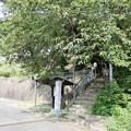Photos: 観音寺 (2)