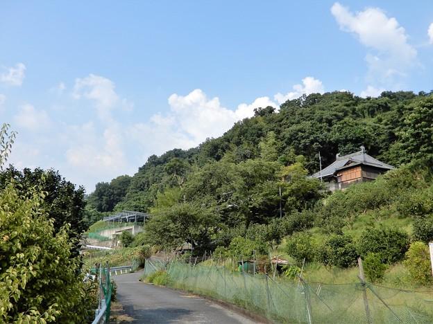 観音寺遠望 (1)