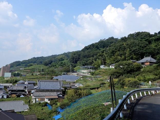 観音寺遠望 (2)
