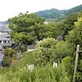 Photos: 歴史の丘展望台公園 (2)