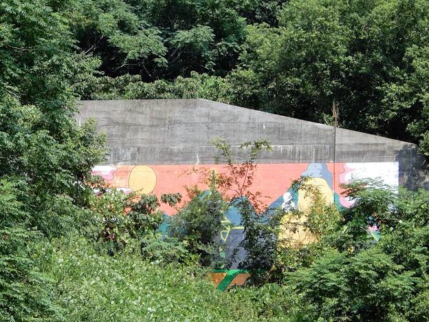 Photos: 智識寺大仏壁画