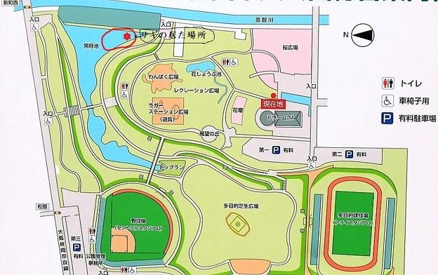 花園中央公園案内板 (2)