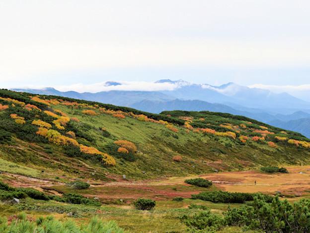 旭岳、遠景は十勝連山(右端:富良野岳、中央:十勝岳)