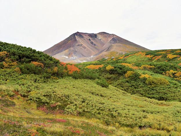 旭岳・登山道から撮影