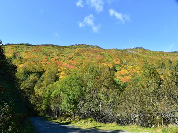 銀泉台・大雪赤岳の東斜面遠景