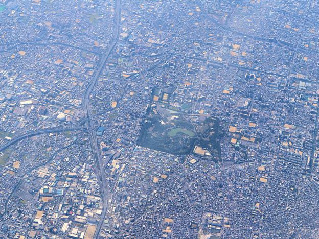 鶴見緑地公園(往路飛行機から)