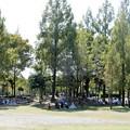 花園中央公園2020.10.16.