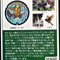 Photos: 01帯広市のマンホールカード (2)