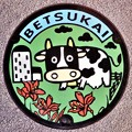 Photos: 086-0205北海道野付郡別海町のマンホール