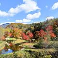 鹿追町 福原山荘の紅葉