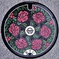 010-0500男鹿市のマンホール(椿の図柄)