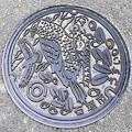 Photos: 907-0000石垣市のマンホール(カンムリワシの図柄)