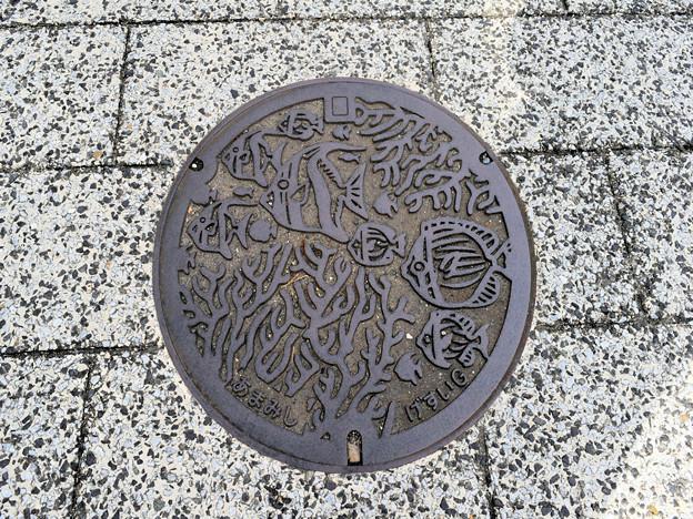 奄美市のマンホール