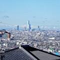 Photos: 墓地からの眺め2020年12月4日 (1)・あべのハルカス