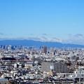 Photos: 墓地からの眺め2020年12月4日 (2)