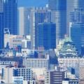 墓地からの眺め2020年12月4日 (3)・大阪城