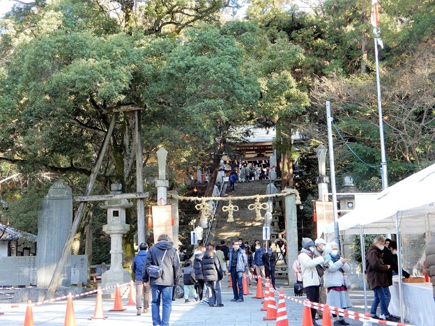 2021年枚岡神社