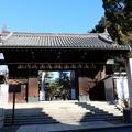 Photos: 御香宮神社 (1)