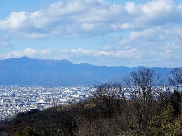 大岩山展望所からの眺望 (2)