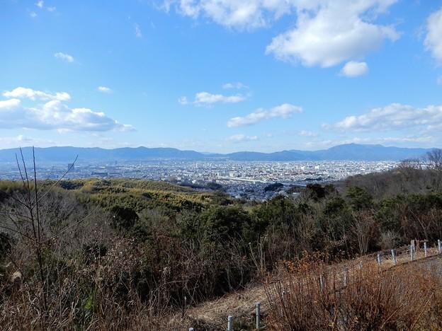 大岩山展望所からの眺望 (3)
