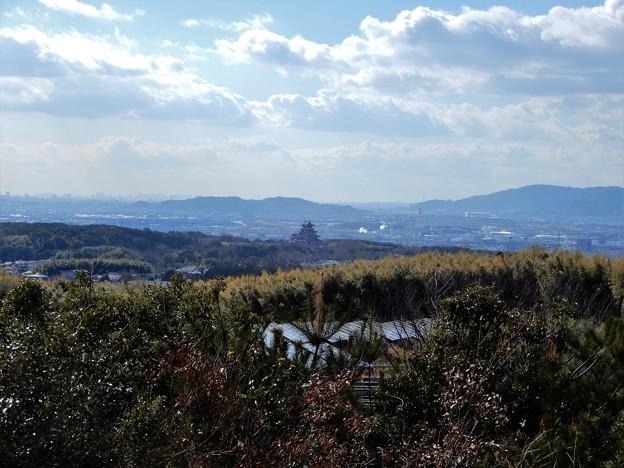 大岩山展望所からの眺望 (4)