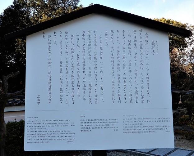 嘉祥寺・深草聖天 (1)