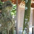 写真: 八重垣神社