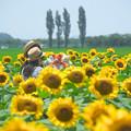 写真: ぬい撮りの夏