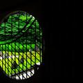 写真: 夏の光明院 吉野窓