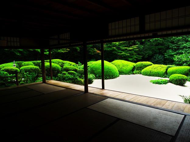 写真: 夏の詩仙堂(人なし)