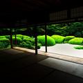 Photos: 夏の詩仙堂(人なし)