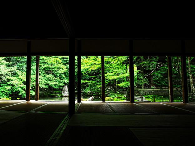 写真: 夏の蓮華寺(人なし)