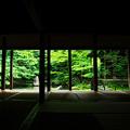 夏の蓮華寺(人なし)
