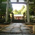 月讀神社 山道を登り切ったところ