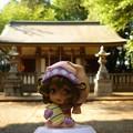 写真: 月讀神社と月読の巫女ささみさん