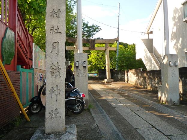 写真: 月讀神社 表参道