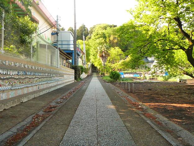 月讀神社 新緑が美しい表参道