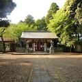 写真: 月讀神社