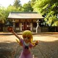 写真: じゃぱないの! 月読神社と忍ちゃん
