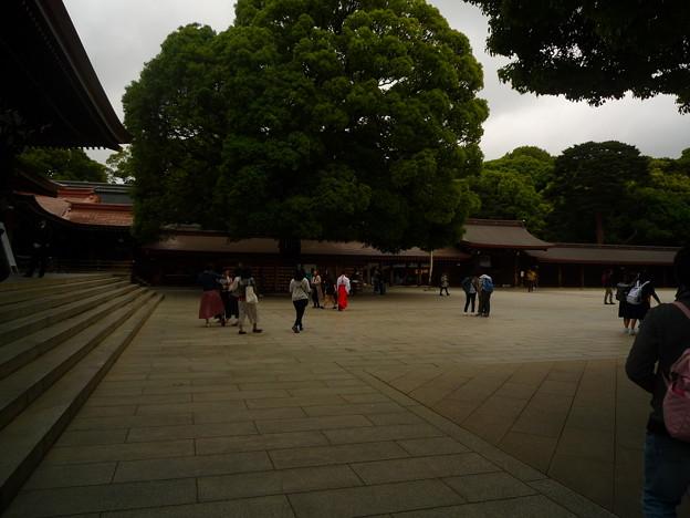 明治神宮・拝殿前