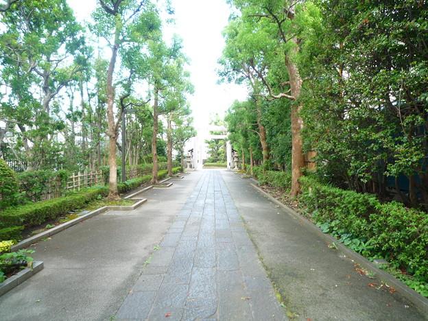神明社の参道