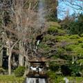 ユリ熊嵐に登場する鶴の噴水